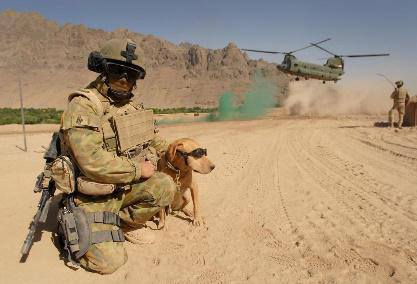Modern soldier with dog