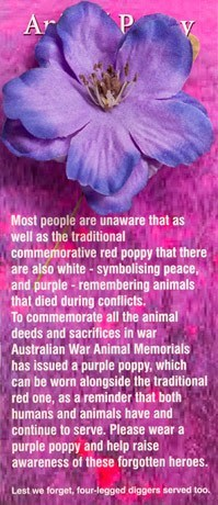 Purple Poppy Animal War Memorial